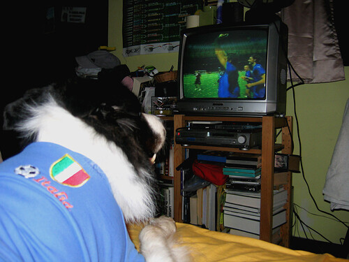 VIVA ITALIA!! - 2006 WORLD CUP WINNERS!