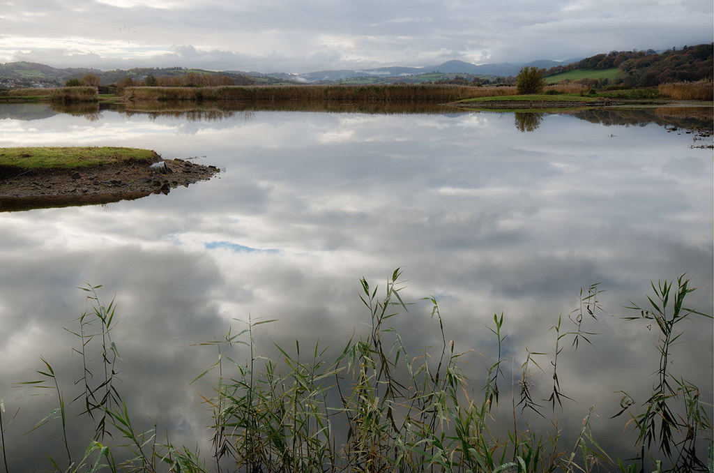 RSPB Bird Reserve