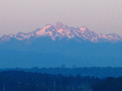 cascades from porch