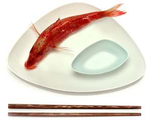 papcorn_fishplate