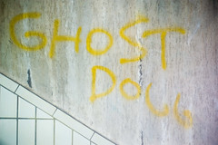 Ghost dogg