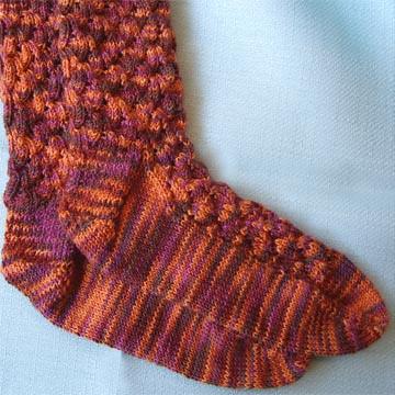 060807_shell_sock
