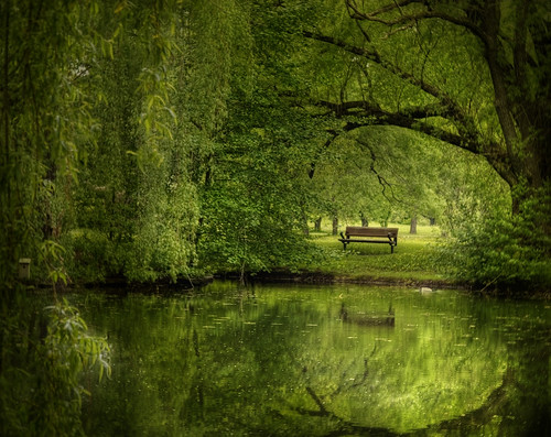 Another green world by IrenaS