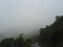 Foggy road with electric wires running above