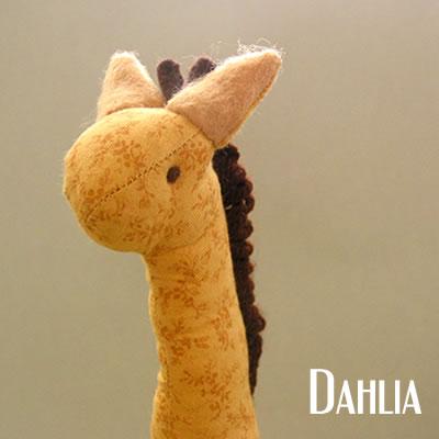 Cotton Strudel - Dahlia