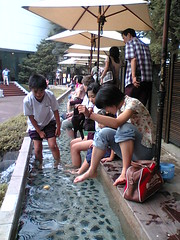 Footbath at Hakone Air Museum