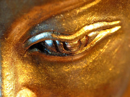 In the eye of the Buddha