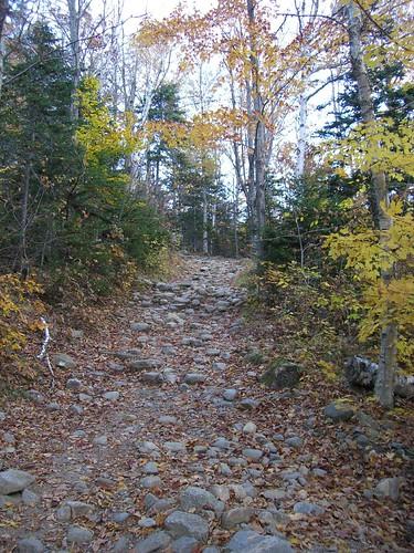 On the Tuckerman Ravine Trail