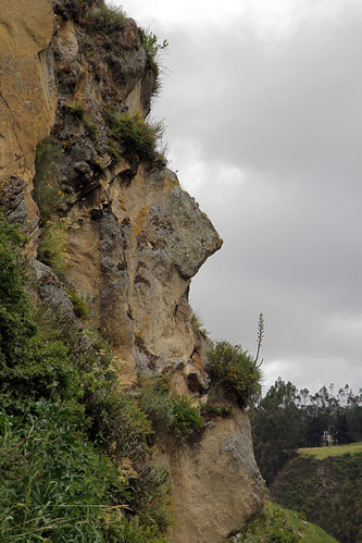The inca face - Ingapirca