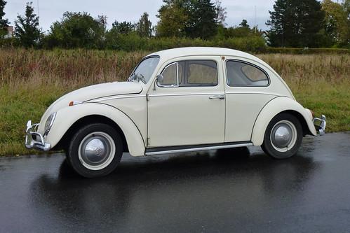 VW P1030839