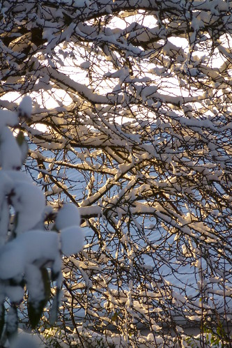 Winter 02122012