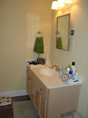 master bathroom: monkey's vanity