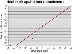 heel vs foot