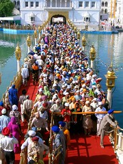 Multitud en el templo dorado. Amritsar.