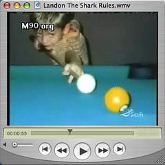 Flip4Mac WMV allows Quicktime to play Windows Media
