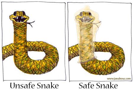 Snake-Unsafe-Safe