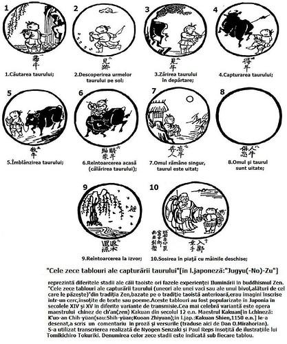 10 BULLS,10 TABLOURI ALE CAUTARII TAURULUI