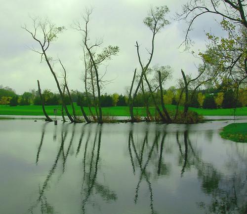 Nobleton Lakes