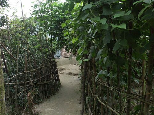 We walked further deep in side villages