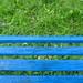Grün mit blauen Streifen