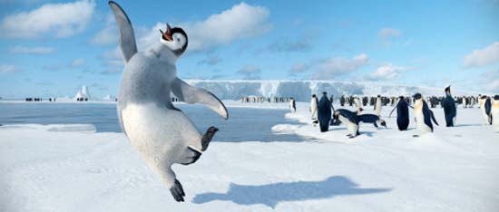 DancingPenguin