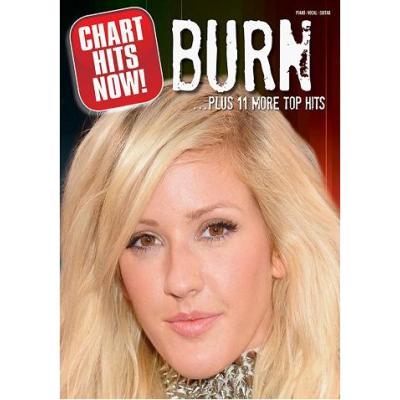Burn + 11 More Top Hits P/V/G