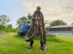 sur YT:  Un chasseur de serpents de Floride attrape du python de 17 pieds après une bataille sanglante  infos