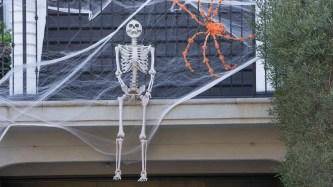 Home Depot's giant Halloween skeleton sells out online: 'I love him'
