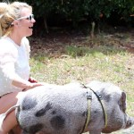 Britney Spears happily pets potbellied pig in Hawaii with boyfriend Sam Asghari amid conservatorship battle 💥👩💥
