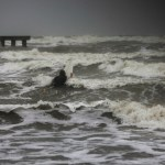 Tropical Storm Nicholas impacts Gulf Coast states, another disturbance being monitored 💥💥