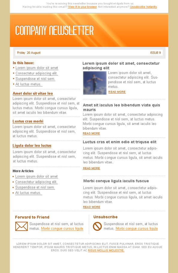 Orange Email Marketing Newsletter Template Preview