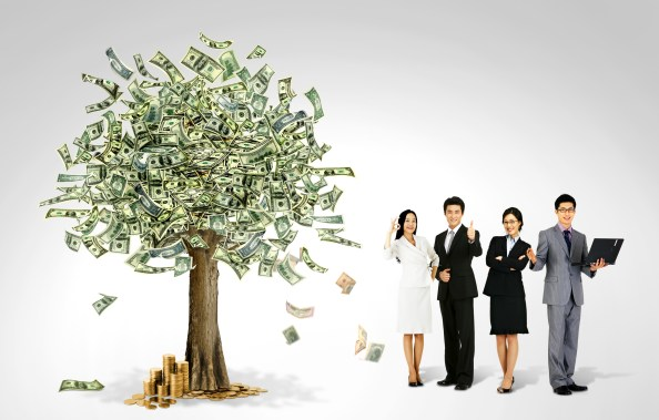 money tree business background