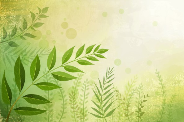 green leaves nature free psd background