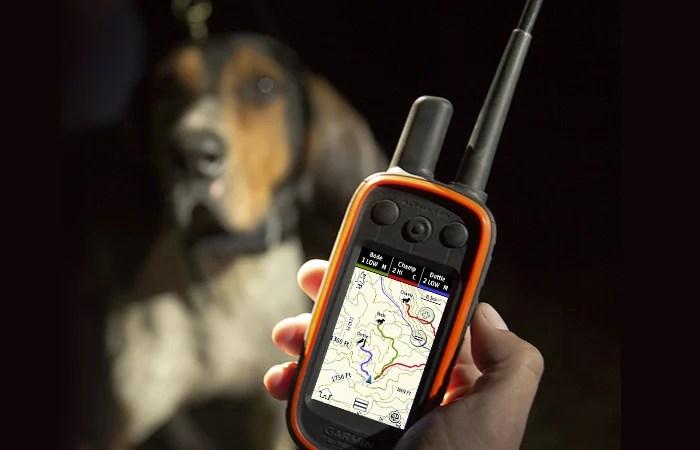 Garmin Alpha Handheld Dog Tracking Training System