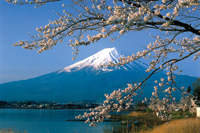 Full Day Mt. Fuji & Hakone with Lunch Thumbnail
