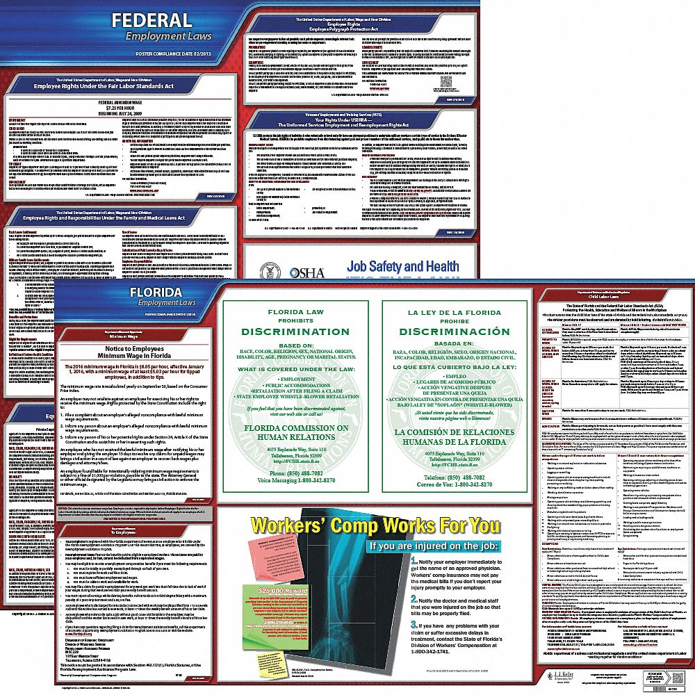 labor law poster kit fl federal and state labor law english none