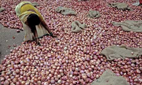 india onions