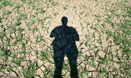 2010 Heatwave in Germany : Drought in agriculture