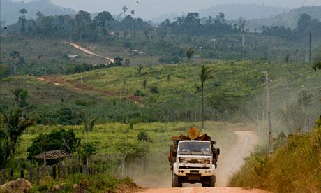 Damian blog : Amazon Deforestation