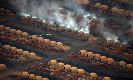 Pig iron in Brazil : Amazon and Cerrado deforestation and Illegal charcoal kilns in Pará state