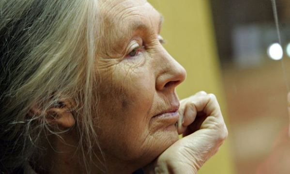 Jane Goodall blames 'chaotic note taking' for plagiarism ...