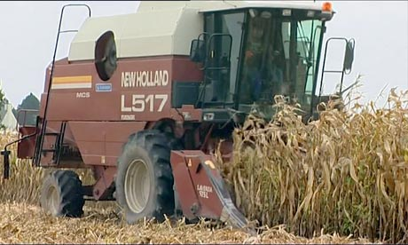 GM crops back on the agenda in Brussels - video