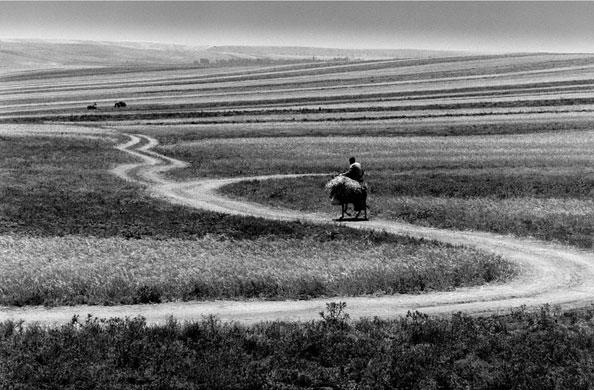 Abbas Kiarostami: ABBAS KIAROSTAMI ROADS (79) 1989 C PRINT, Edition of 2. 58.7 X 90 CM