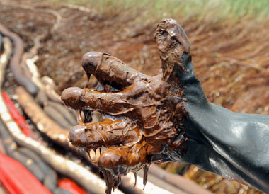 BP oil spill in the Gulf of Mexico