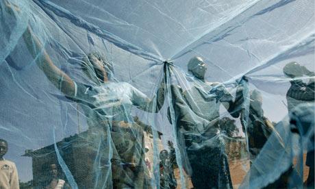 malaria nets