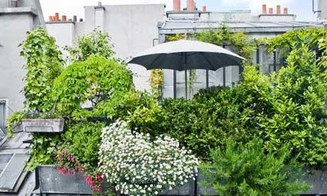 Gardens: Roof gardens