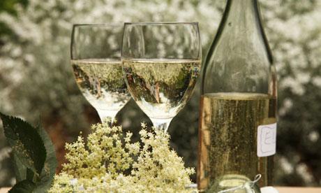 Elderflower Champagne