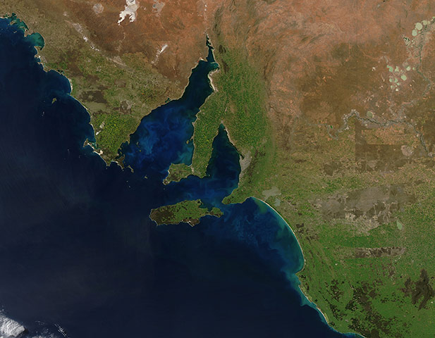 Satellite Eye: phytoplankton blooming off the coast of South Australia