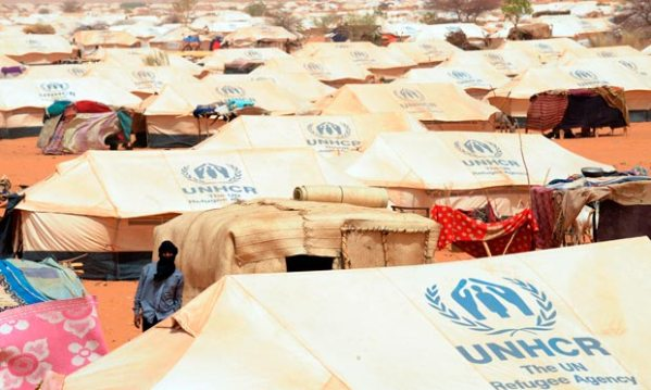 Mali refugees have witnessed horrific abuses, says UN ...