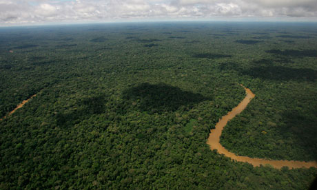 An aerial view of the Yasuni National Park, in Ecuador's northeastern jungle